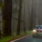 Foglie cadute, pioggia e nebbia: le sfide dell'autunno